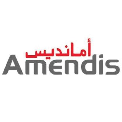 Amendis 100-01