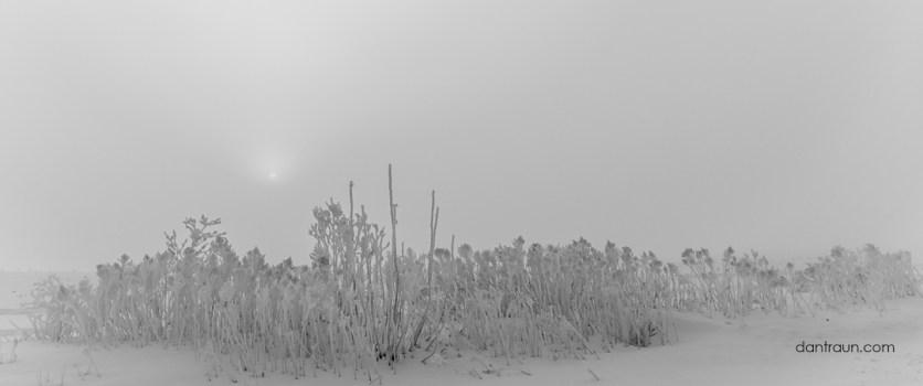 Hoar-Frost Sunrise