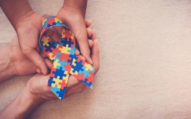 Level 2 Certificate in Understanding Autism