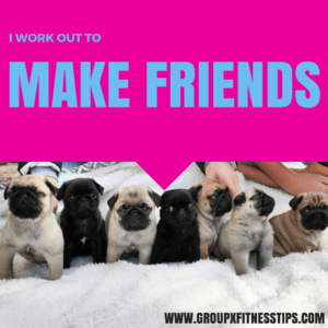 I work out to make friends. Picture of pug puppies in a row.