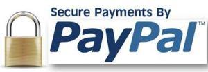 Pay Pal image