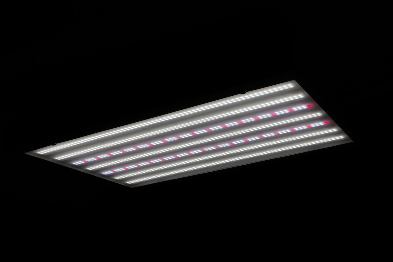 S1 450w Veg spectrum image Commercial LED Grow Light