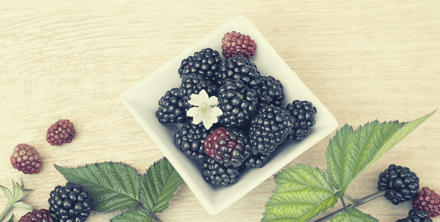 What Are Antioxidant Foods? What is an antioxidant?