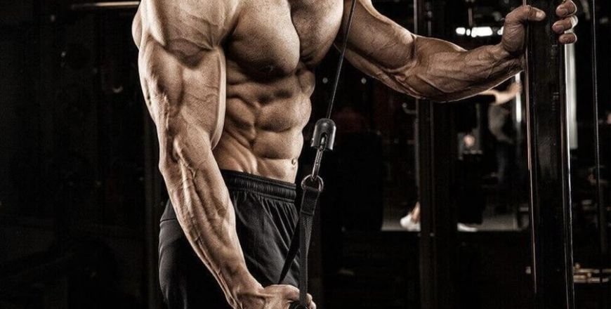 10 Best Tricep Exercises and Workout for Men