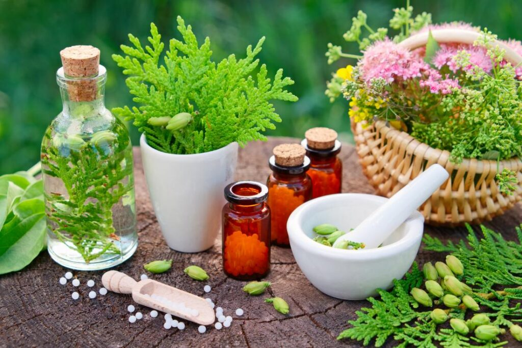 5 Things You Should Know About Homeopathy Treatment