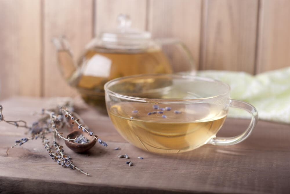 Benefits of lavender tea. Side Effects and Lavender Tea Recipe