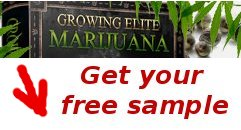 growing elite marijuana free sample