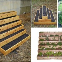 Solutions for Small Gardens