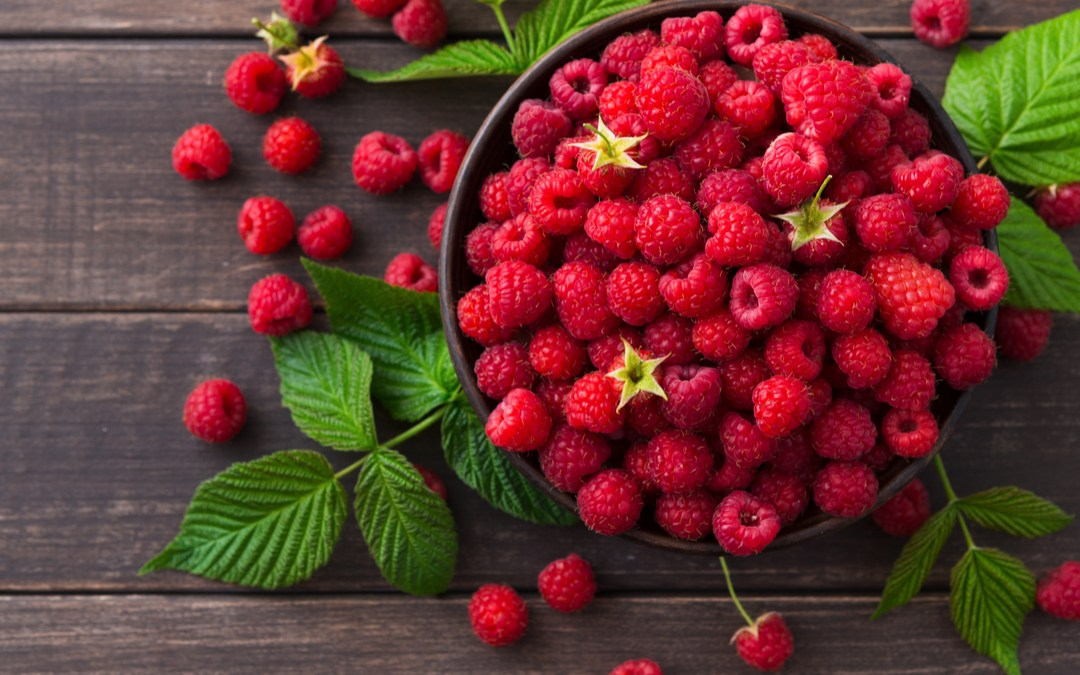 How To Grow Your Own Vibrant Raspberries