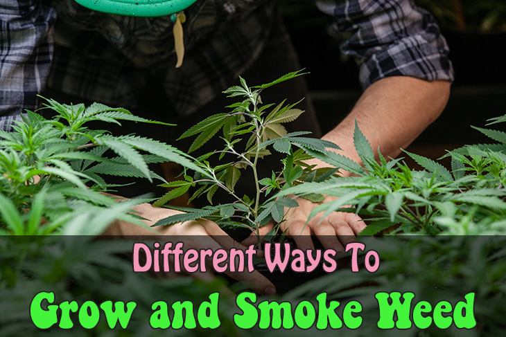 Different Ways To Grow and Smoke Weed