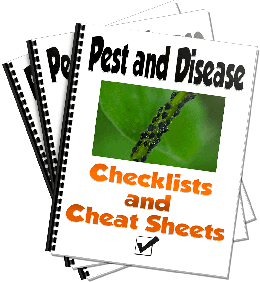 Pepper pests and disease checklists and cheat sheets