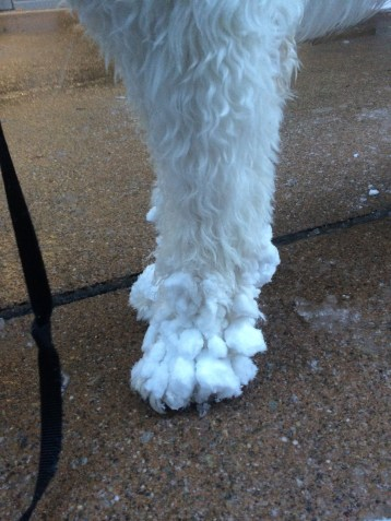 Icicles on feet