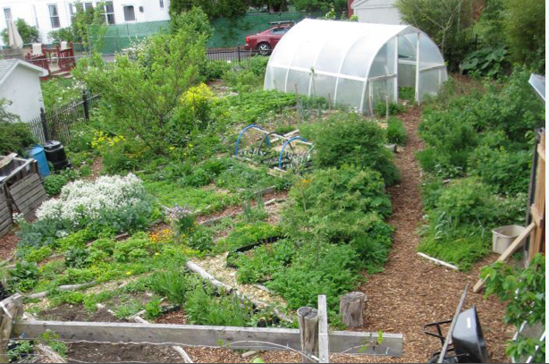Permaculture Gardens are so much better than 'normal ... on Backyard Permaculture Design id=20209
