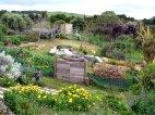 permaculturegardens2