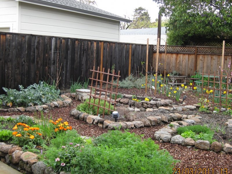 Permaculture Gardens are so much better than 'normal ... on Backyard Permaculture Design id=24762