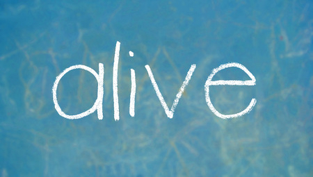 Discipleship Devotional Study Guide - Life - Galatians 2:20 - But Christ Lives In Me - Growing As Disciples