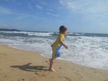 Minion on the beach