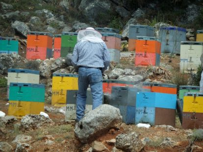 No major honey producers in Crete, all are local and sell locally.