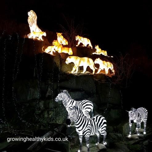 The most amazing giant lanterns of china