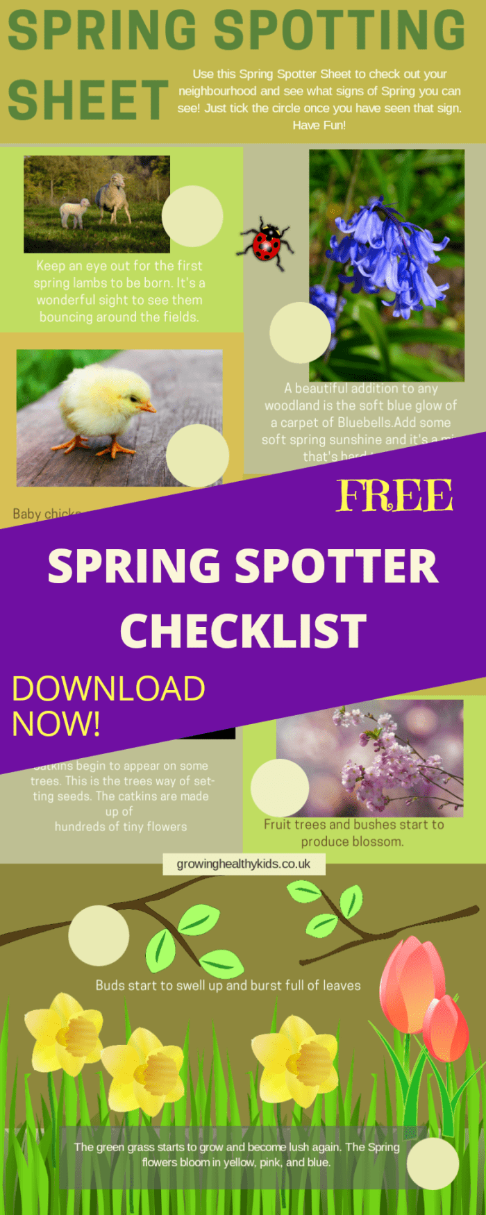 Signs of spring spotting checklist