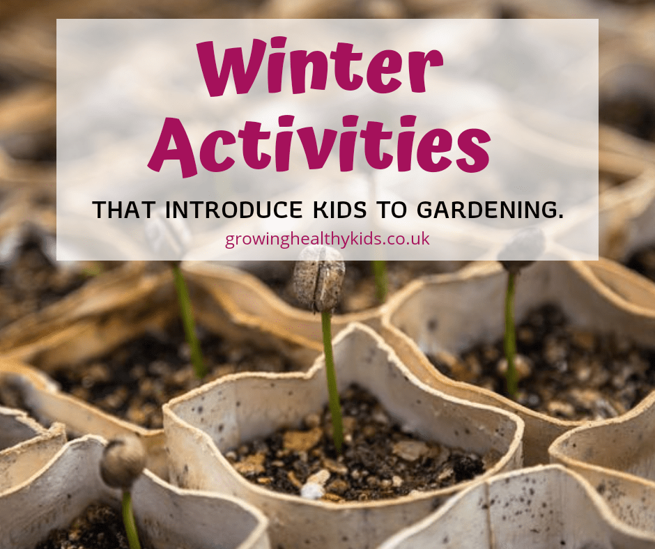 Winter activities that will give kids the bug for gardening.Winter Gardening is a fantastic activity to introduce to kids. So many vegetables and fruit you can grow in winter and indoor projects and crafts to try.