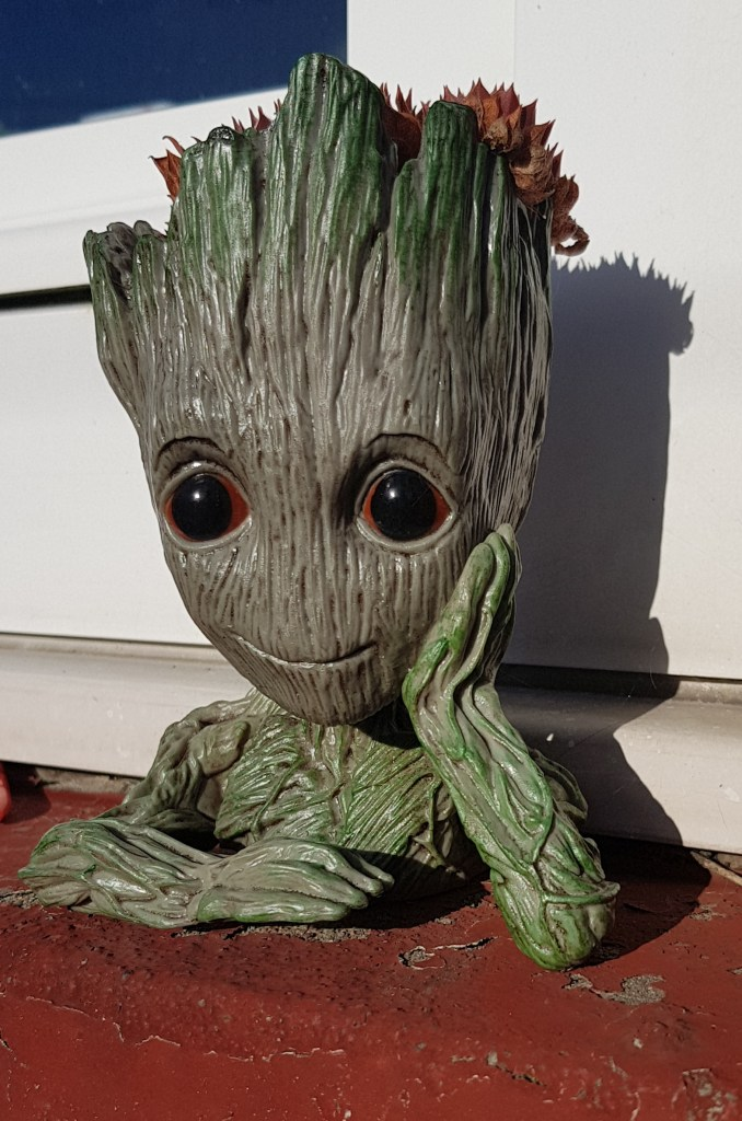 Groot pots make fantastic outdoor gifts for kids