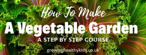 vegetable gardening for beginner's