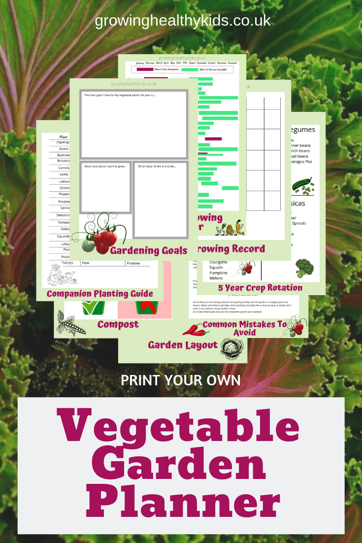 graphic about Free Printable Garden Planner titled Do it yourself Vegetable Backyard Planner - Expanding Healthful Children