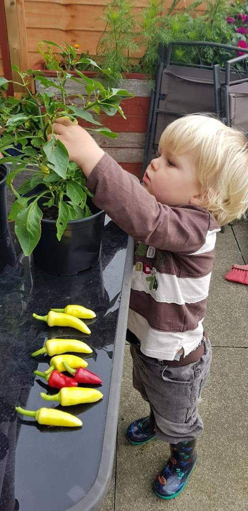Growing vegetables and food should be started super young and it will become a way of life.