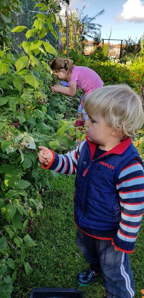 growing vegetables with your kids
