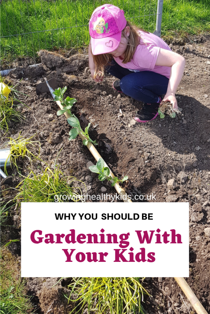 gardening for beginners and growing vegetables with your kids is an amazing way to get fresh food, fresh air and lots of exercise