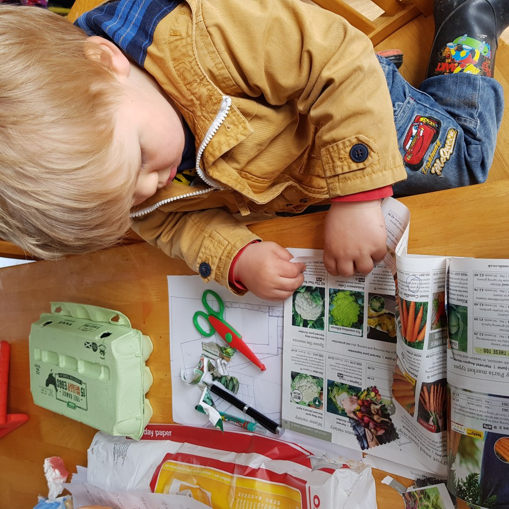 Diy seed starting activities for kids. Use egg cartkns to sow seeds easily then plant in containers.how to grow seeds