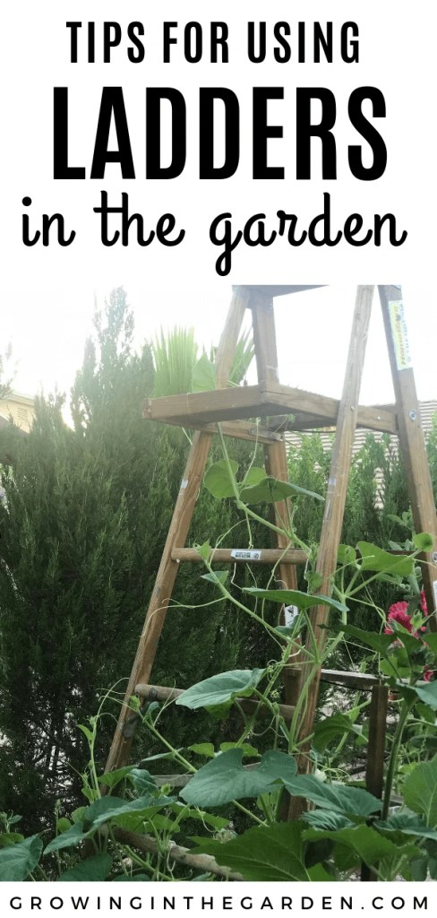 tips for using ladders in the garden