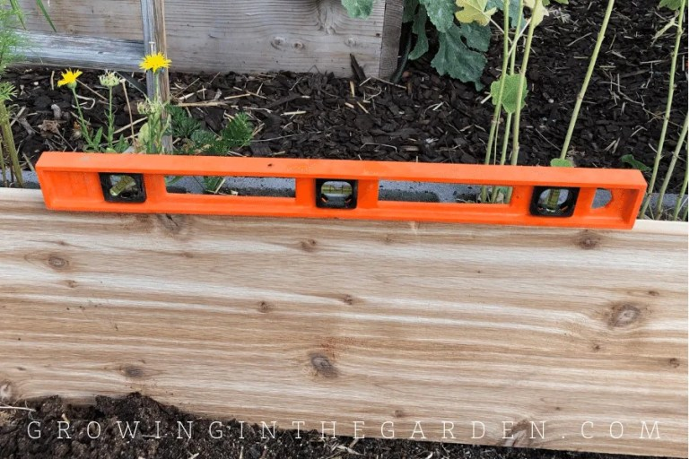 10 Tips for Designing a Raised-Bed Garden Layout