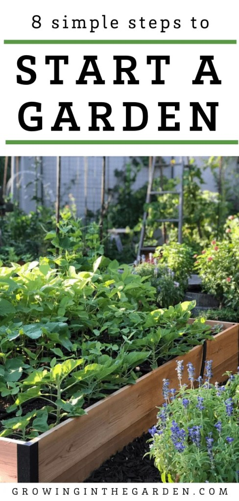Gardening for Beginners: How to Start a Garden in 8 Simple Steps