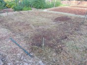 Our Site, #32. 20' x 20'