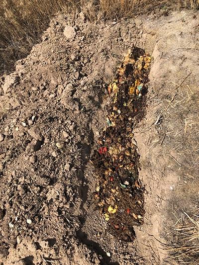 burying the bokashi