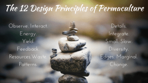 The 12 Design Principles of Permaculture