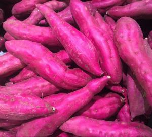 growing sweet potatoes-min