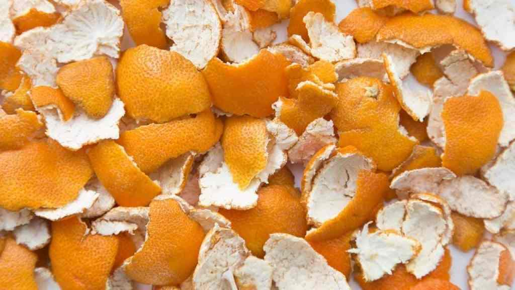 using orange peels in the garden