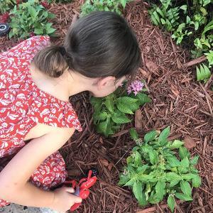 kids learning to garden