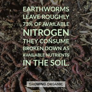 earthworms improve health of soil