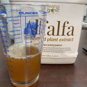 alfalfa fermented plant extract
