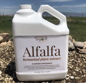 alfalfa fermented plant extract