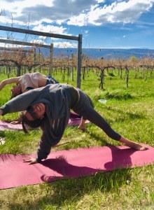 private yoga sessions | montrose, colorado