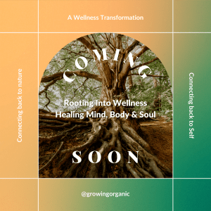 wellness program to connect back to the Self through nature
