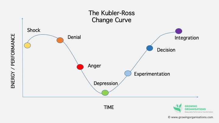 Where Are You On The Change Curve? - Growing Organisations Ltd
