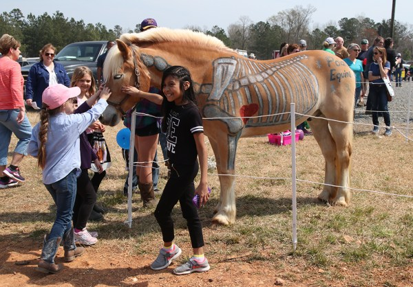 Save the Date for Our 2020 Spring Ag Fest! | NC State ...