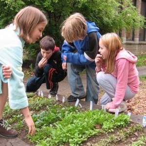 Children-eating-salad