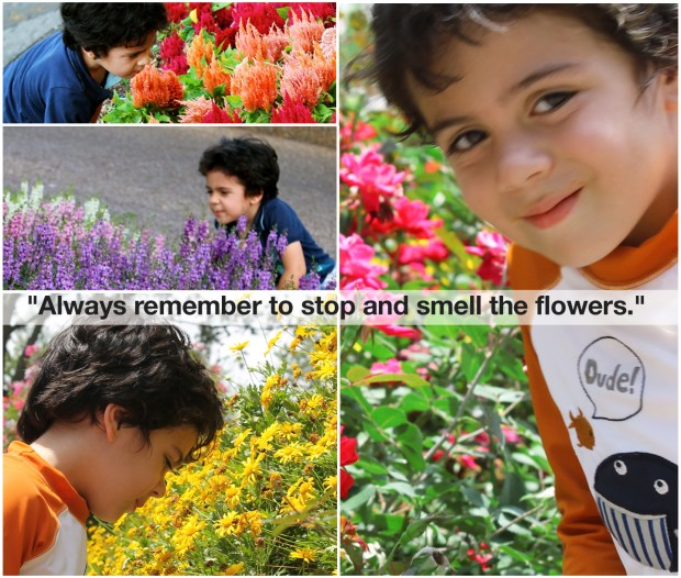Stop and smell the Flowers1